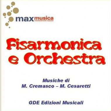 Fisarmonica e orchestra